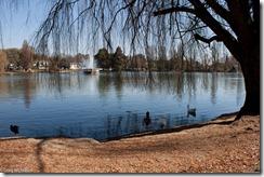 Photo of Zoo Lake